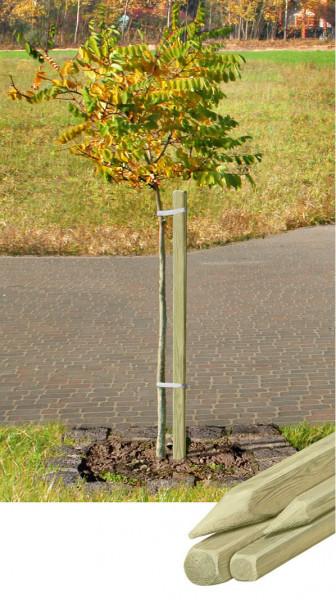 Pflanzpfahl 150 cm