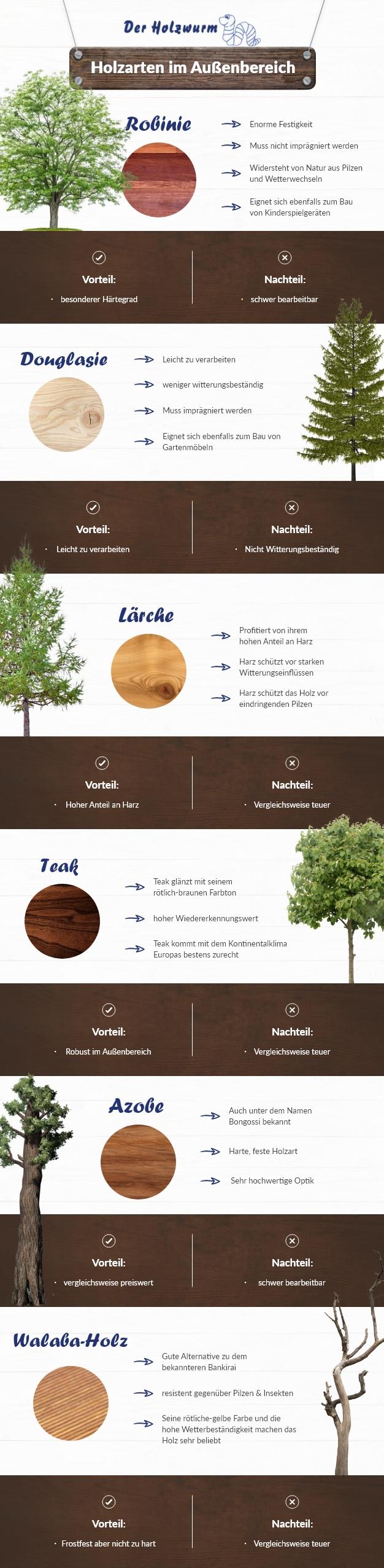 Holzarten im Außenbereich Infografik