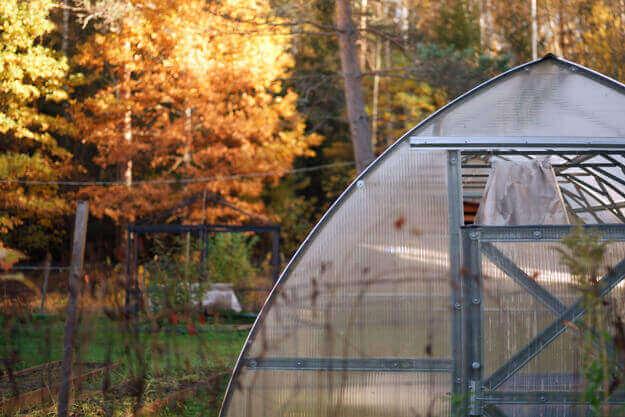 Gewächshaus mit buntgefärbten Bäumen im Herbst